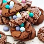 Chocolate-Nest-Cookies-Marla-Meridith-BO1V0061-1